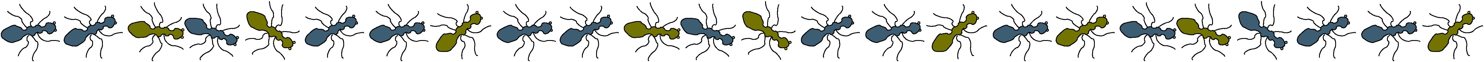 ant-line1
